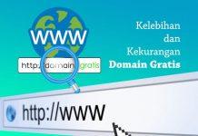 Kelebihan dan kekurangan serta cara cek domain gratis