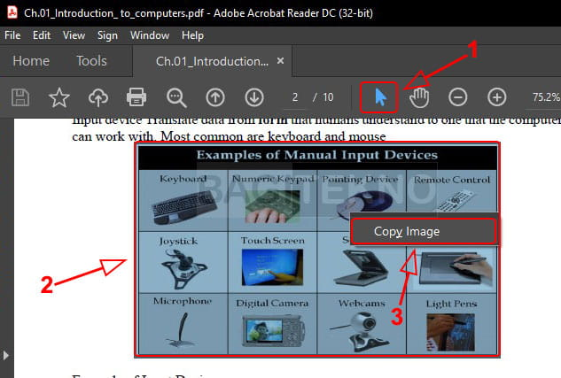 Menyeleksi gambar di Adobe Reader