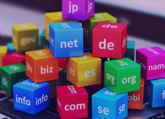 pengertian, fungsi, dan jenis domain pada website